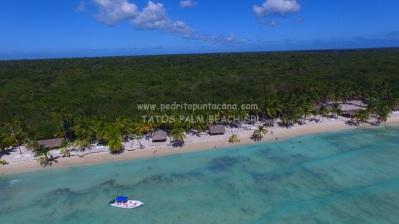 Playa abanico saona completa VIP