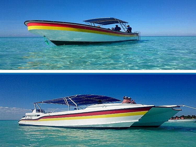 Pedrito Saona boats