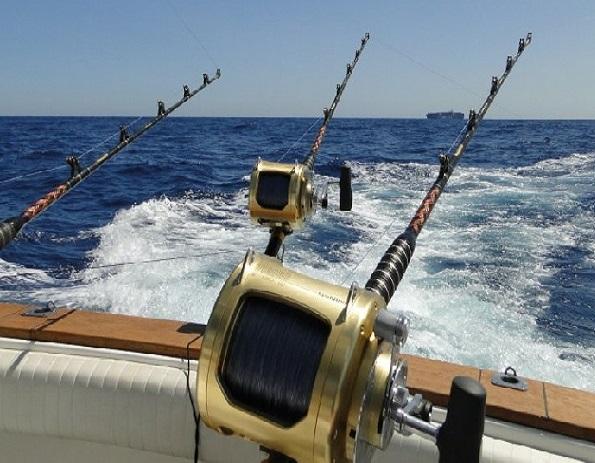 pesca de altura en punta cana