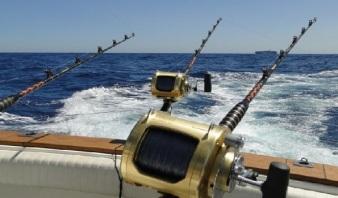 pesca de altura punta cana