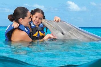 delfines punta cana