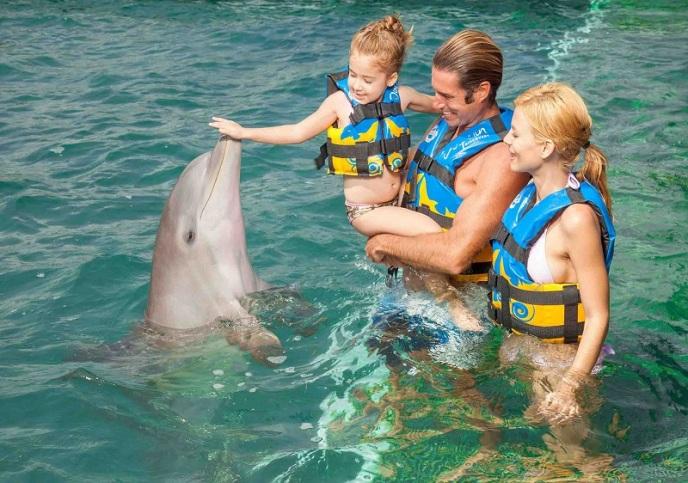 Dolphin punta cana