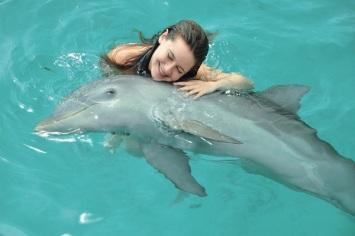 punta cana delfines