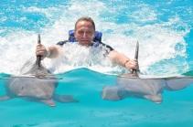 punta cana nadar delfines